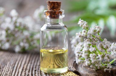 Ontwikkelingen in de homeopathie